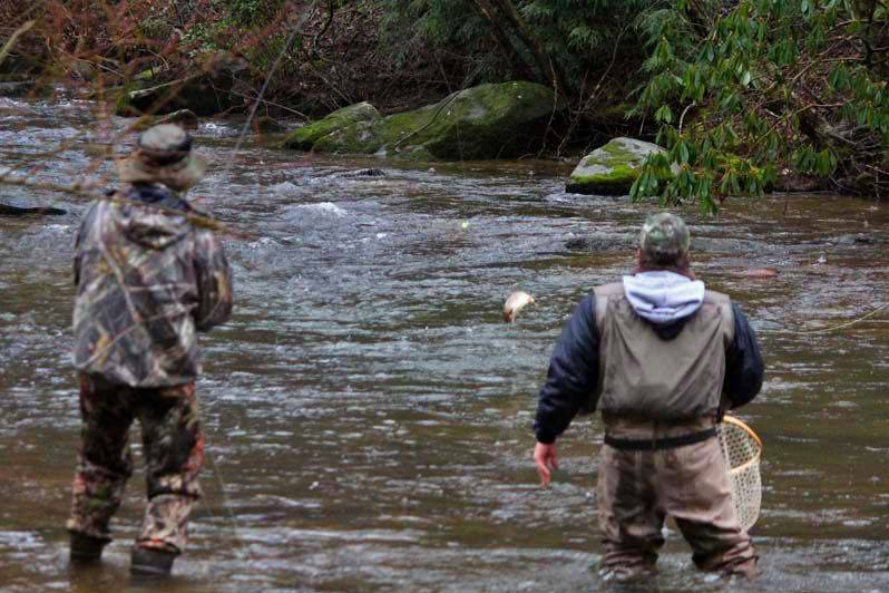 Mountaintown Creek offers trophy trout, even in the rain