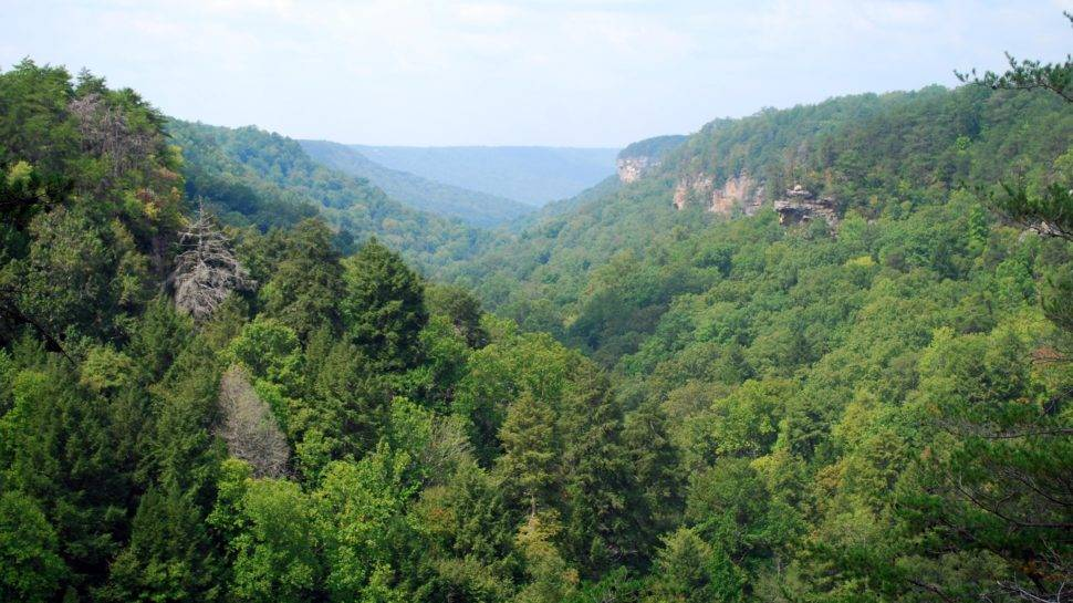 A Savage Gulf hike with a view and a waterfall - NOOGAtoday on tennessee state parks map, savage gulf hiking trails map, alabama gulf shores state park map, gulf state park backcountry trail map, gulf state park camping map, rock island state park map,