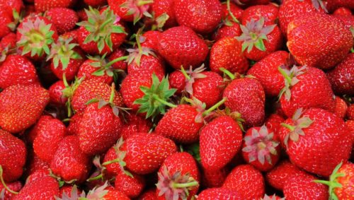 Ripe, red strawberries in a pile