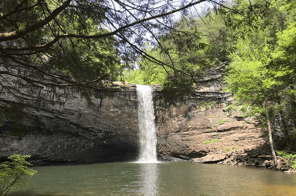 Photo of a large waterfall pouring into a lake and surrounded by trees.